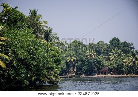 Panoramic View With Coconut Trees In Backwaters. Landscape Of Alleppey Kerala India