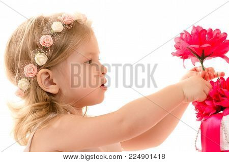 charming baby girl holding red flower isolated on white