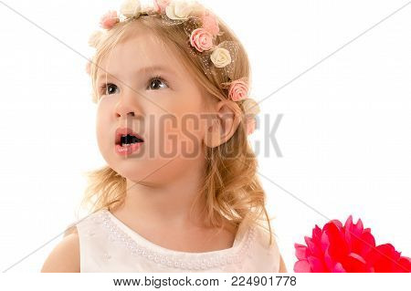 portrait surprised charming girl with rim on head