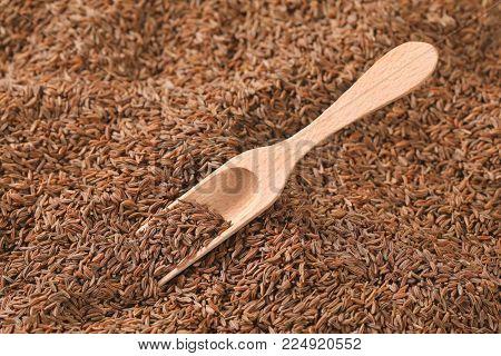 scoop of caraway seeds