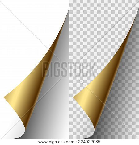 Vector golden metallic realistic paper page corner curled up. Paper sheet folded with soft shadows on light transparent background. 3d illustration. Template for your design.