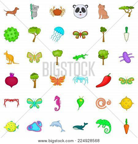 Bio supervision icons set. Cartoon set of 36 bio supervision vector icons for web isolated on white background