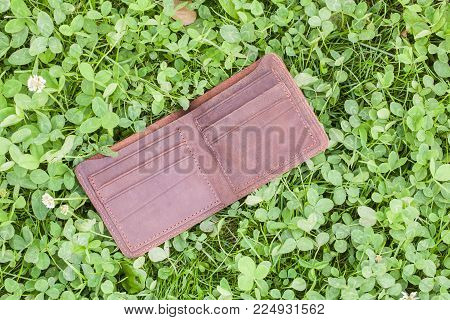 wallet in grass top outdoor For your design.