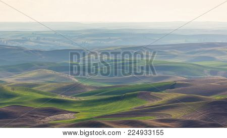 Palouse Rolling Hills in Haze in Spring, Washington