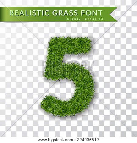 Grass number five. Green number five, isolated on white transparent background. Green grass 3D 5, fresh symbol nature, plant lawn, summer. Grass spring font. Beautiful eco design Vector illustration