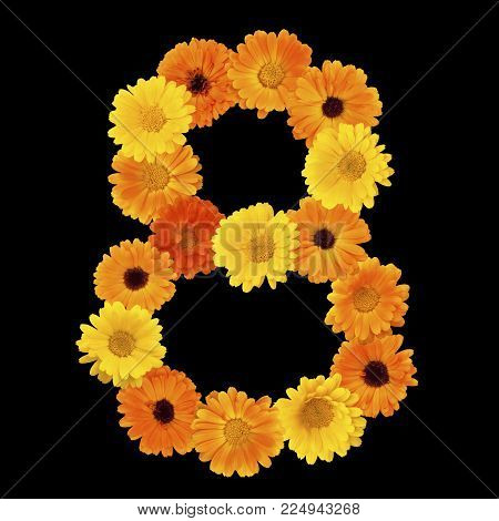 Floral number 8 isolated on black background. Floral arrangement number eight of yellow and orange calendula flowers. Decorative element for design greeting cards to women's day. Flat lay. Top view.