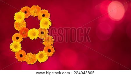 Amazing background with number 8 of yellow and orange marigolds flowers on red texture. Beautiful Colorful Greeting Card for March 8, international women day. Wide Web banner With Copy Space for text
