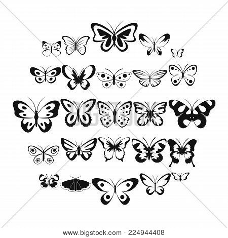 Butterfly icons set. Simple illustration of 25 butterfly vector icons for web