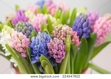 Flower shop concept. Mixed color. Fresh spring flowers in refrigerator room for flowers. Bouquets on shelf, florist business