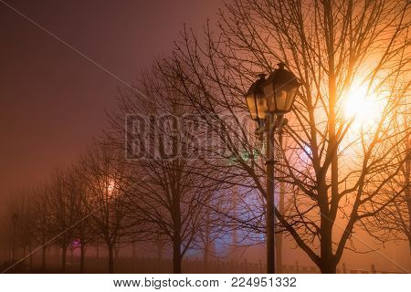 Fog in the city park at night by the light of street lamps during the thaw, street lamp close up