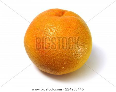 Macro photo of grapefruit citrus fruit isolated on white background