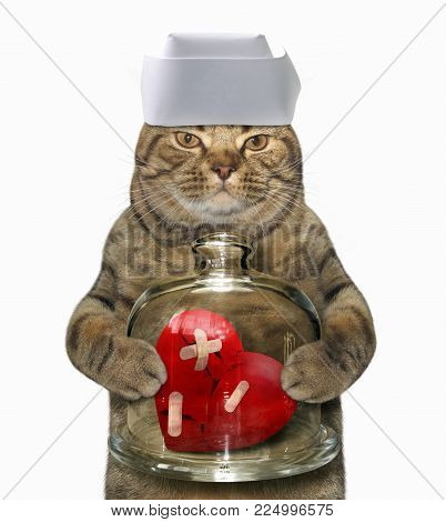 The cat holds a red broken heart under a glass cloche. White background.