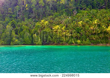 Togian Islands Travel Destination, Togean Islands Scenic Beach And Coastline With Lush Green Jungle