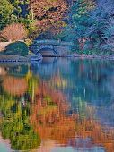 Japanese garden autumn pond reflections with small stone arch bridge. Beautiful colorful rippled Monet water color like reflections naturally lighting up this Japanese feature pond with stone bridge in Tokyo, Japan. poster