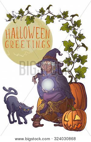 Old Witch With Her Black Raven And Cat Holding A Crystal Ball And Foretelling The Future. Colored Li
