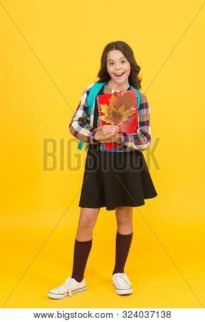 Beginning Of Autumn Semester. Autumn Time For Studying. School Education Concept. Girl Enjoying Autu