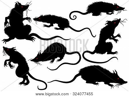 Illustration Fantasy Grotesque Rats With Red Eyes