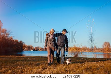 Senior Couple Walking Pug Dog In Autumn Park By River. Happy Man And Woman Enjoying Time With Pet.