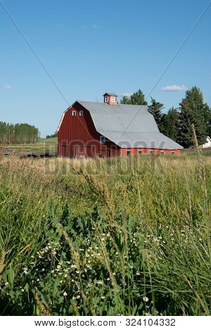 Bright Red Barn In A Wheat Field In The Palouse Region Of Eastern Washington State In Summer