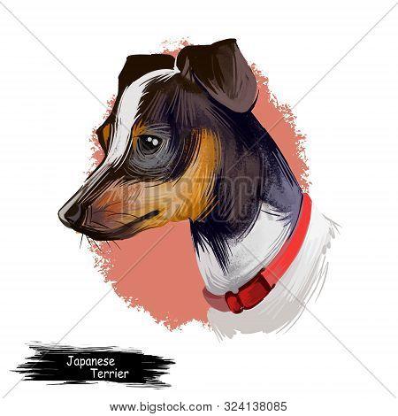 Japanese Terrier, Nippon Terrier, Nihon Teria, Nihon Terrier Dog Digital Art Illustration Isolated O