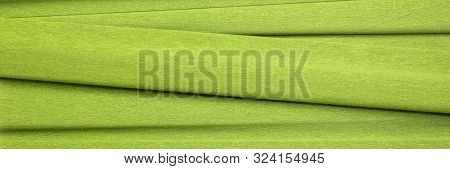green crepe paper - background with crinkled texture, panoramic banner poster
