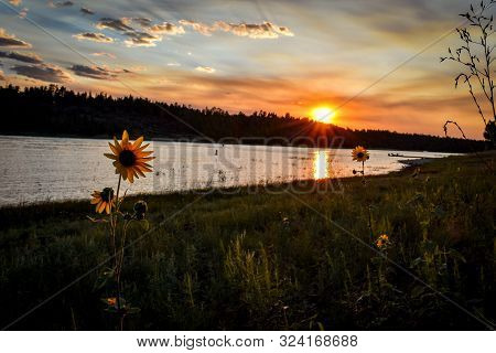 Colorful Sunset Over Mountain Lake With Sunflower