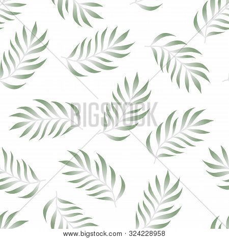 Tropical Seamless Pattern With Fern, Palma Leaves, Green Color Branches On White Background. Floral