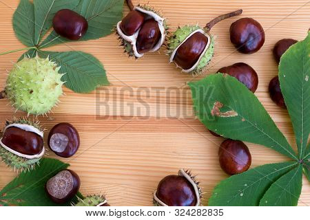 Chestnuts Seeds. Chestnut Leaves. Autumn Composition With Chestnuts In The Wooden Table.