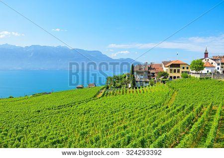 Picturesque Wine Growing Village Rivaz In Lavaux Wine Region, Switzerland. Lake Geneva And Swiss Alp
