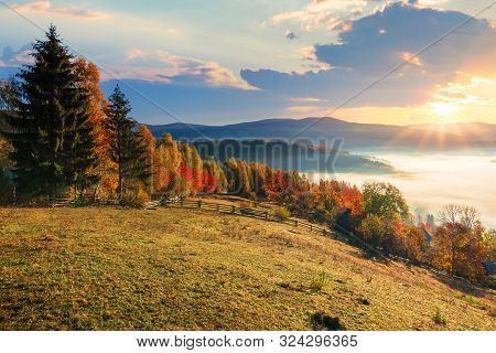 Amazing Countryside In Fall Season At Sunrise. Gorgeous View In To The Valley Full Of Glowing Fog. S