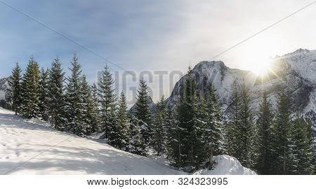 Sunny Winter Landscape With Snow-capped Mountain Peaks, Snow Fir Trees, And Snowdrift, Under Sun Ray
