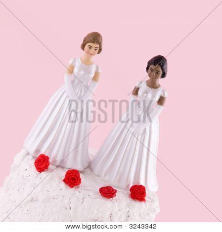 Lesbian Wedding Day