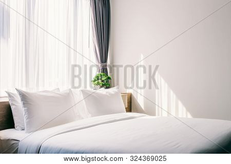 Close-up Of White Pillow On Bed Decoration With Light Lamp And Green Tree In Flowerpots In Hotel Bed