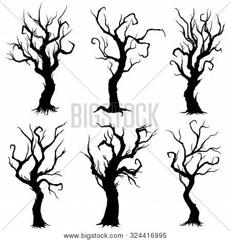 Illustration Fantasy Bold Bare Decorative Trees Silhouettes