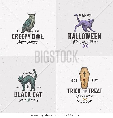 Vintage Style Halloween Logos Or Labels Template Set. Hand Drawn Owl, Evil Cats And Coffin Sketch Sy