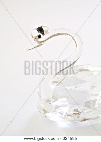 Glass Swan 2
