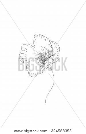 Flowers, Blue Star Flower Line Expand Icon On White Background