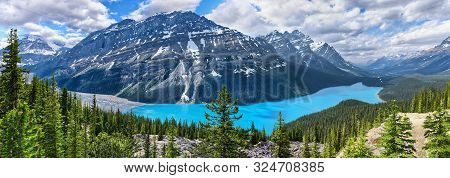 Panoramic View Of Famous Mountain Peyto Lake At Sunny Weather, Banff National Park, Alberta, Canada