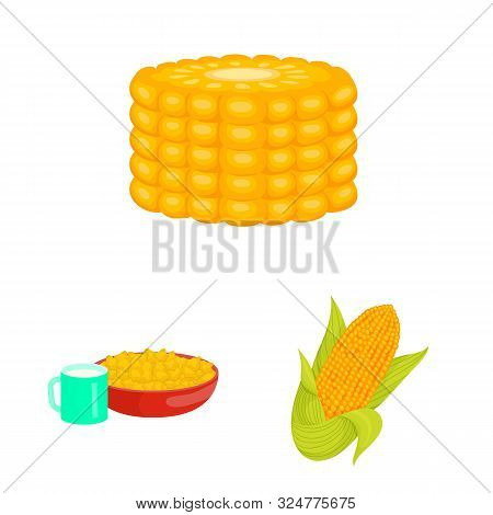 Vector Illustration Of Maize And Food Icon. Set Of Maize And Crop Vector Icon For Stock.