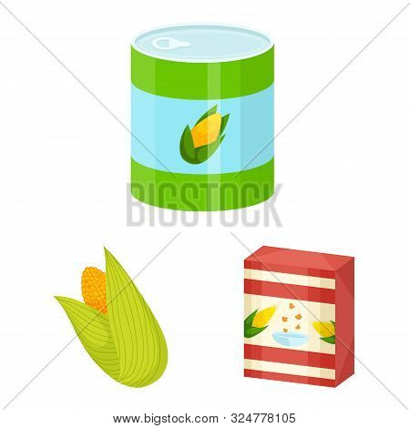 Vector Design Of Maize And Food Icon. Collection Of Maize And Crop Stock Vector Illustration.