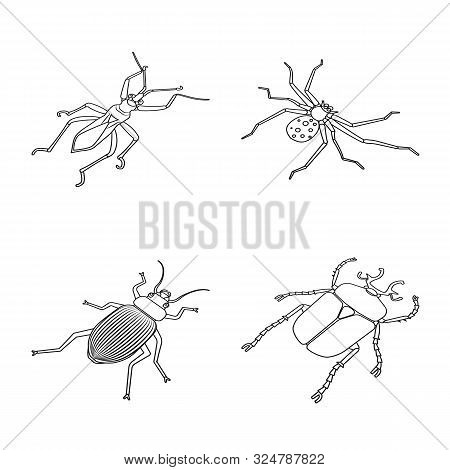 Isolated Object Of Fauna And Entomology Symbol. Collection Of Fauna And Animal Vector Icon For Stock