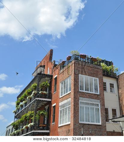 New orleans Balconies and Rooftop Gardens