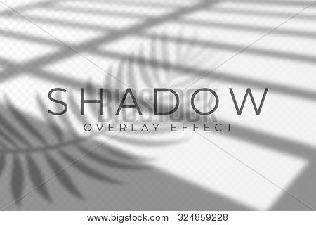 Shadow Overlay Effect. Vector Shadow And Light Overlay Effect, Natural Lighting Scene. Mockup Of Tra