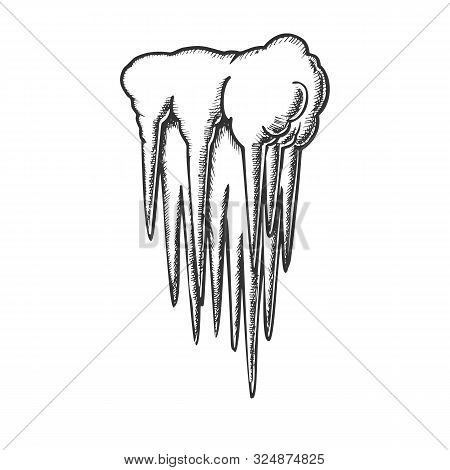 Stalactite Cave Ceiling Element Monochrome Vector. Amazing Mystery Aged Stalactite And Stalagmite. T