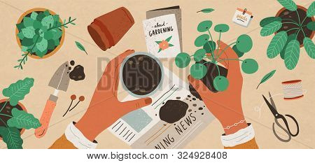 Flowers Replanting Flat Vector Top View Illustration. Houseplant Nursery And Care. Indoor Succulent,