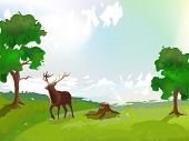 red deer is pasturing on nice glade poster