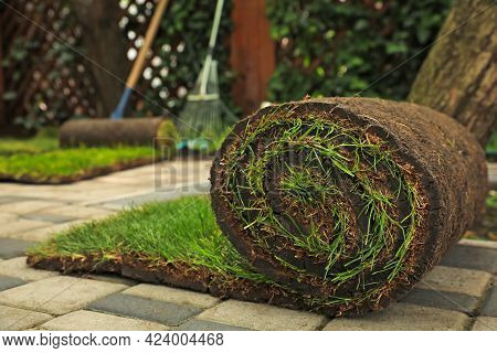Rolled Grass Sod On Pavement At Backyard. Space For Text