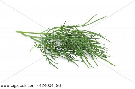 Sprigs Of Fresh Dill Isolated On White