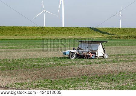 Noordoostpolder Flevoland Netherlands, June 2021 Eastern European Seasonal Workers At The Farm Land