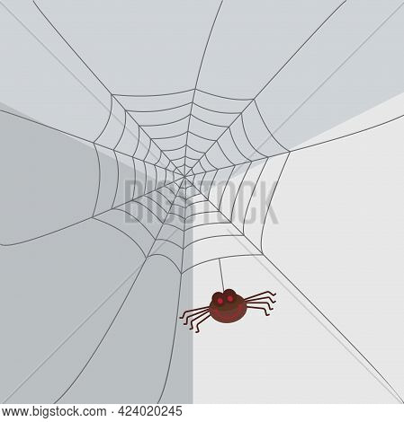 Spider Web With Spider Hanging In The Corner Of A Room